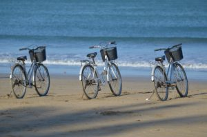bicycle-rental-1028952_1920