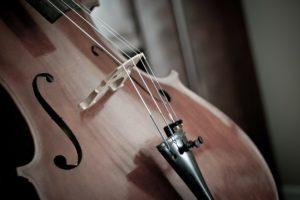 cello-110981_1920